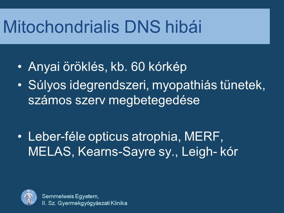 Mitochondrialis DNS hibái