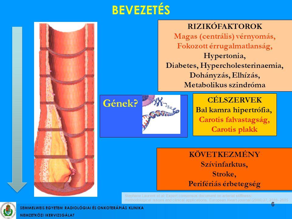 BEVEZETÉS Gének RIZIKÓFAKTOROK Magas (centrális) vérnyomás,