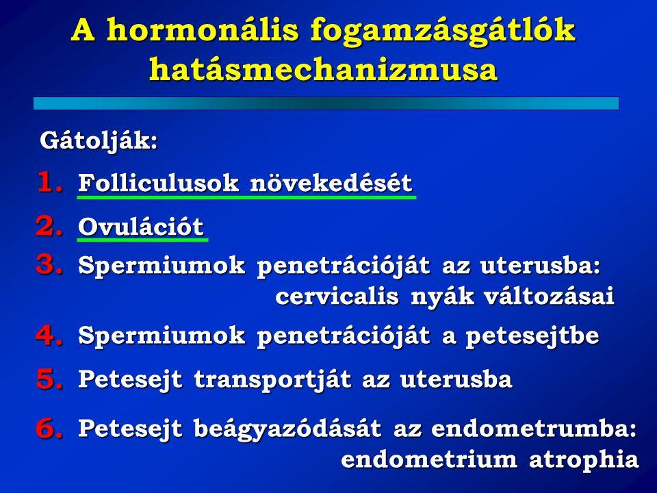 A hormonális fogamzásgátlók hatásmechanizmusa