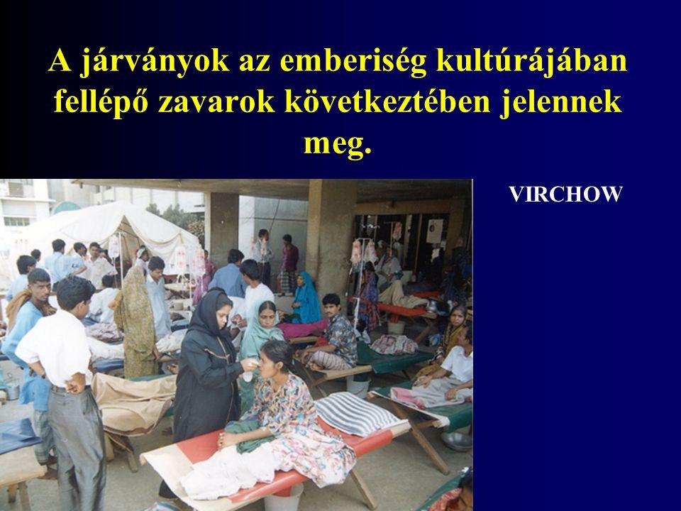 A járványok az emberiség kultúrájában fellépő zavarok következtében jelennek meg.