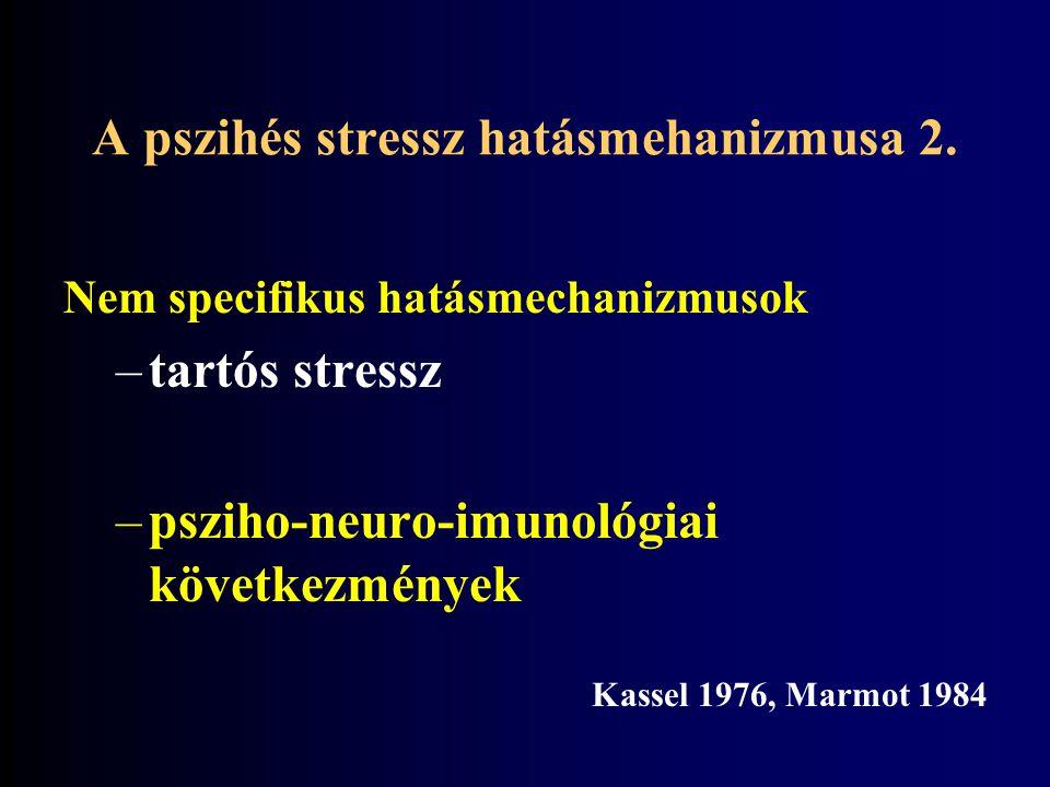 A pszihés stressz hatásmehanizmusa 2.
