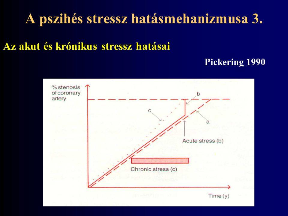 A pszihés stressz hatásmehanizmusa 3.