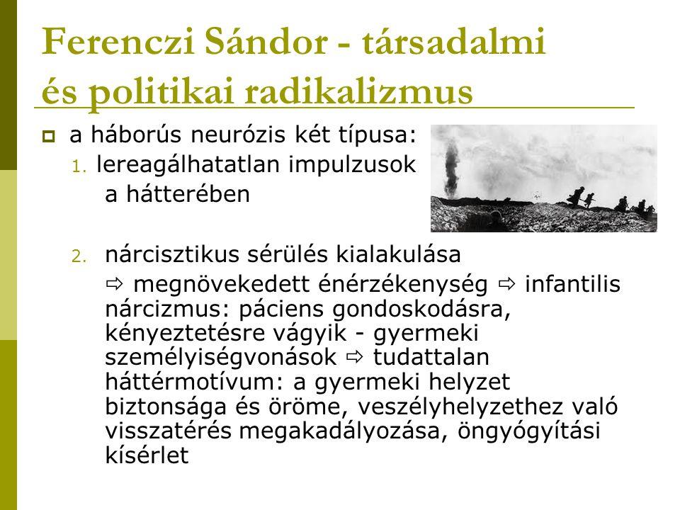 Ferenczi Sándor - társadalmi és politikai radikalizmus