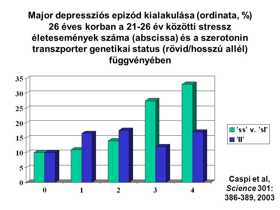 Major depressziós epizód kialakulása (ordinata, %) 26 éves korban a 21-26 év közötti stressz életesemények száma (abscissa) és a szerotonin transzporter genetikai status (rövid/hosszú allél) függvényében