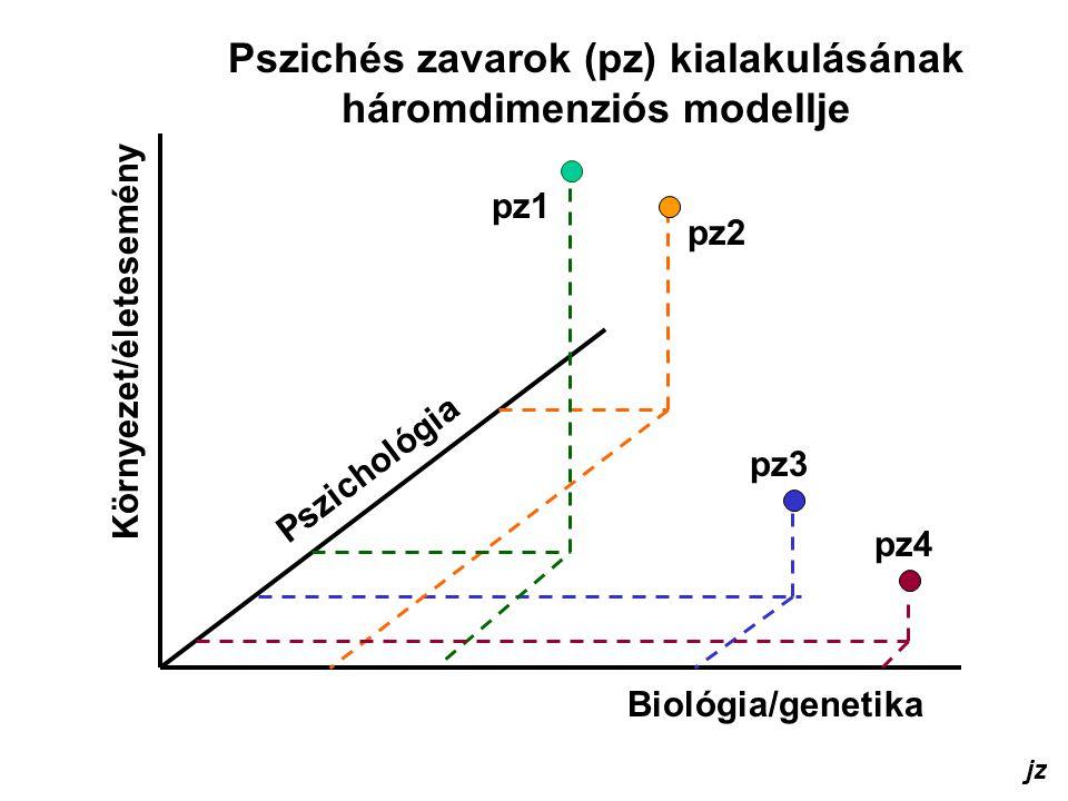 Pszichés zavarok (pz) kialakulásának háromdimenziós modellje