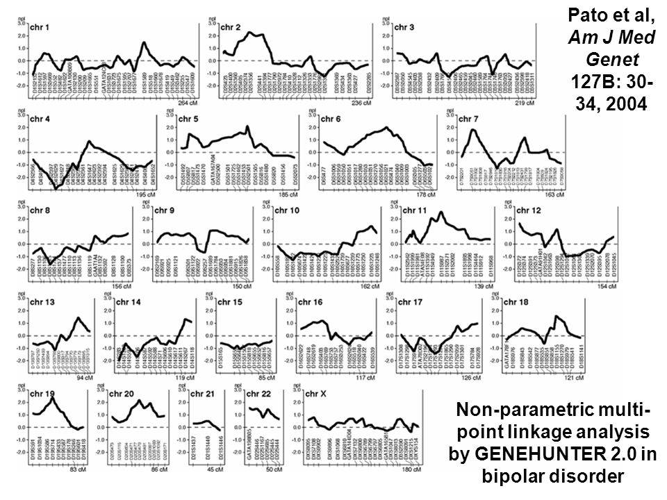 Pato et al, Am J Med Genet 127B: 30-34, 2004