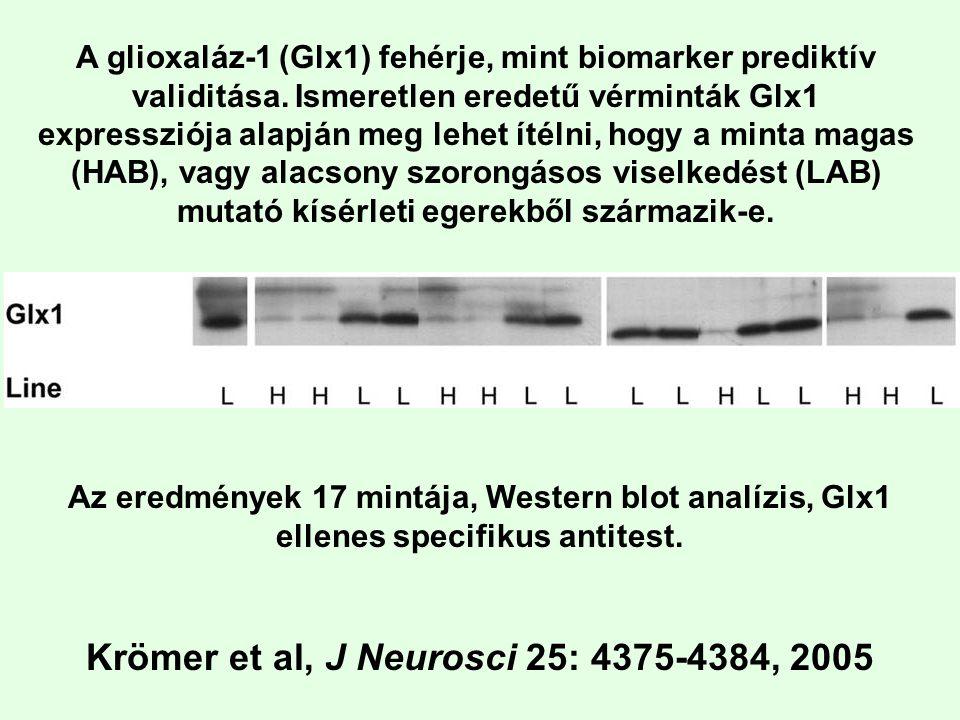 Krömer et al, J Neurosci 25: 4375-4384, 2005
