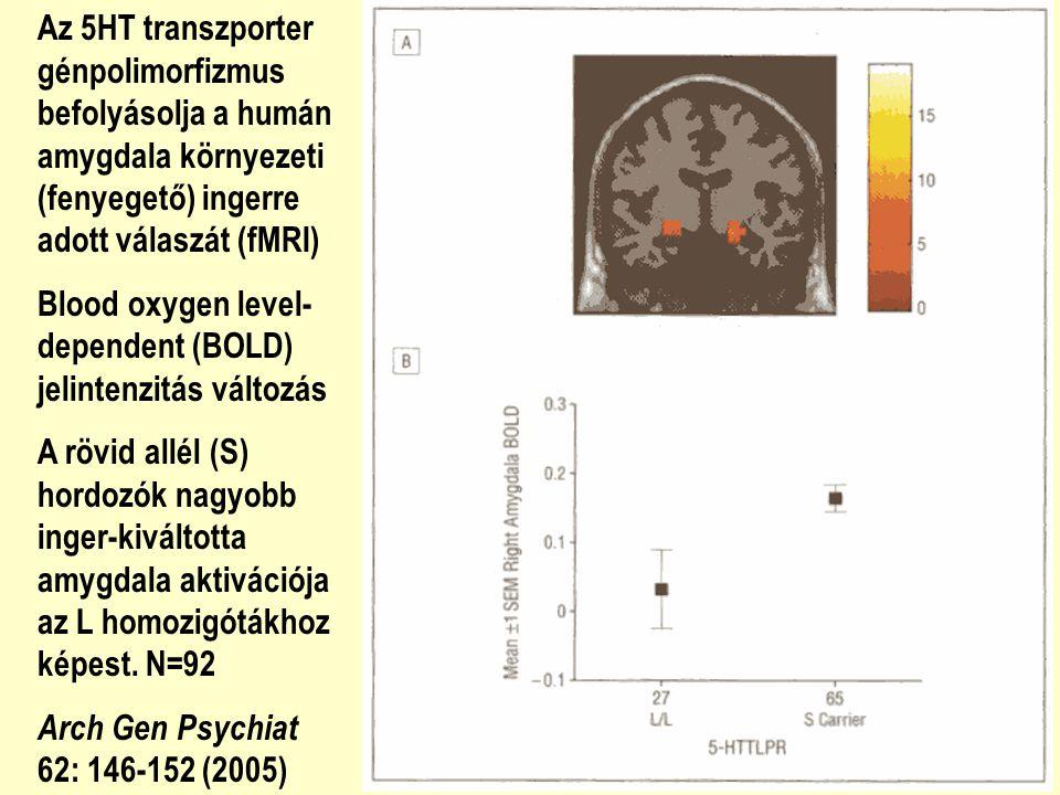 Az 5HT transzporter génpolimorfizmus befolyásolja a humán amygdala környezeti (fenyegető) ingerre adott válaszát (fMRI)