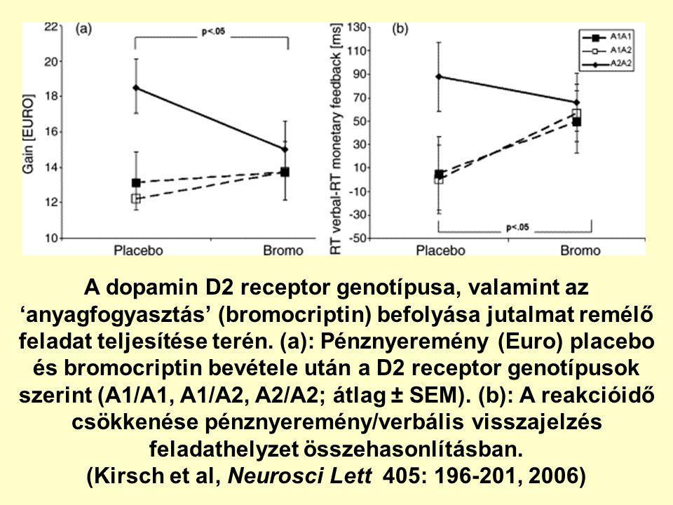 A dopamin D2 receptor genotípusa, valamint az 'anyagfogyasztás' (bromocriptin) befolyása jutalmat remélő feladat teljesítése terén.