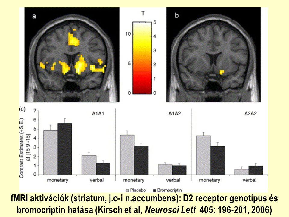 fMRI aktivációk (striatum, j. o-i n