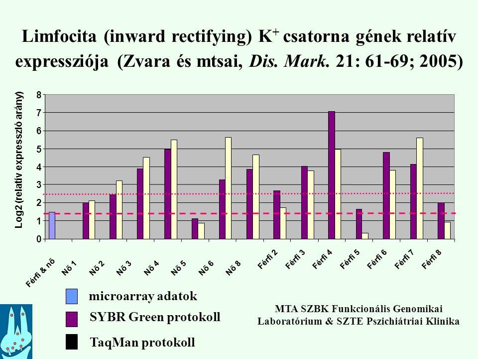 Limfocita (inward rectifying) K+ csatorna gének relatív expressziója (Zvara és mtsai, Dis. Mark. 21: 61-69; 2005)
