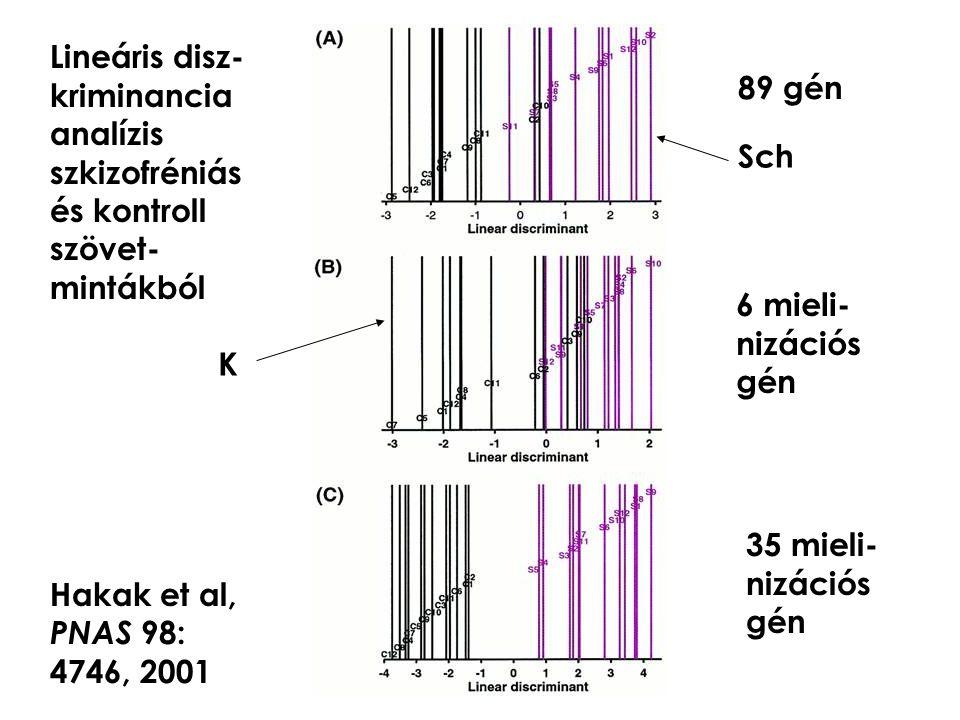 Lineáris disz- kriminancia. analízis. szkizofréniás és kontroll szövet- mintákból. Hakak et al,