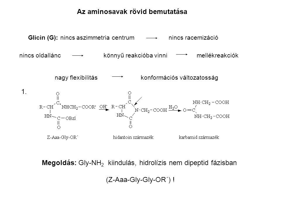Megoldás: Gly-NH2 kiindulás, hidrolízis nem dipeptid fázisban