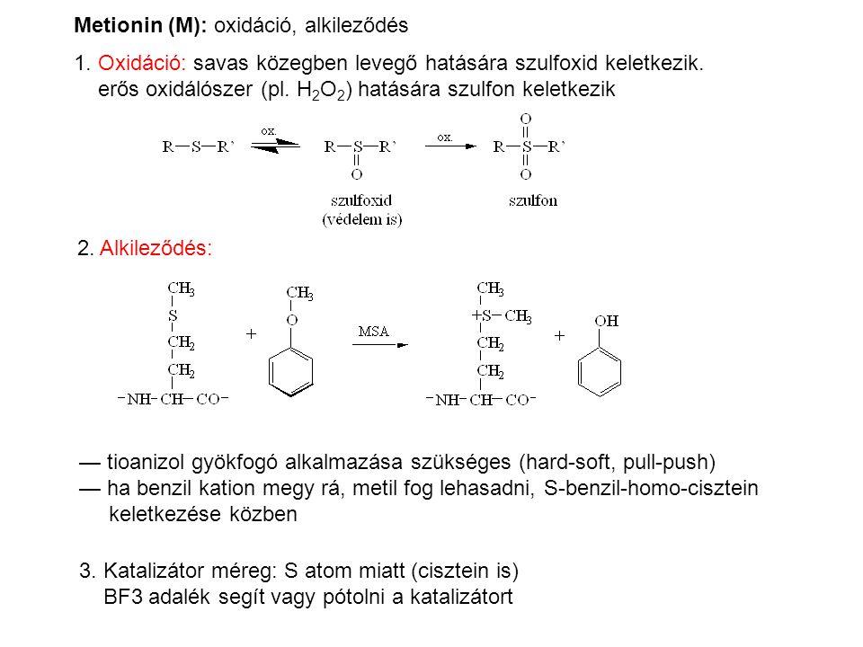 Metionin (M): oxidáció, alkileződés