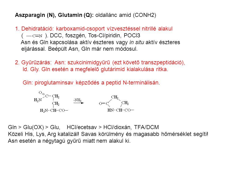 Aszparagin (N), Glutamin (Q): oldallánc amid (CONH2)
