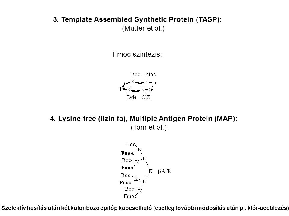 3. Template Assembled Synthetic Protein (TASP): (Mutter et al.)