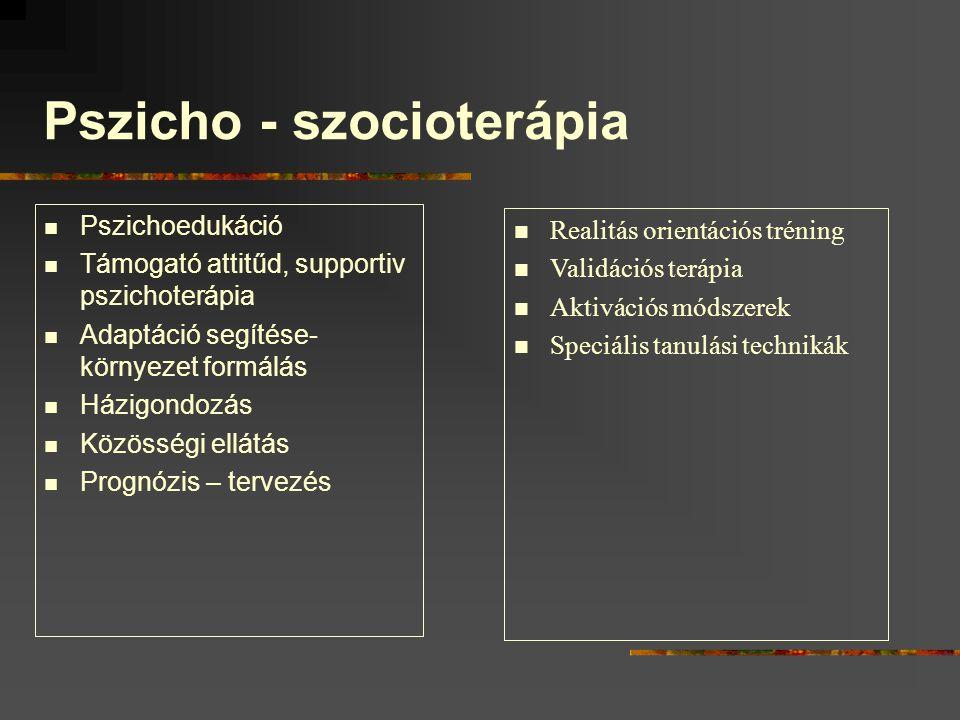 Pszicho - szocioterápia