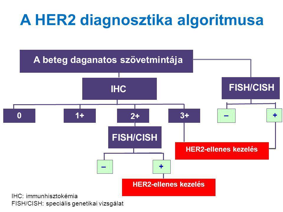 A HER2 diagnosztika algoritmusa A beteg daganatos szövetmintája