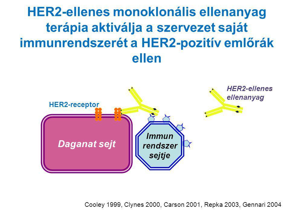 HER2-ellenes monoklonális ellenanyag terápia aktiválja a szervezet saját immunrendszerét a HER2-pozitív emlőrák ellen