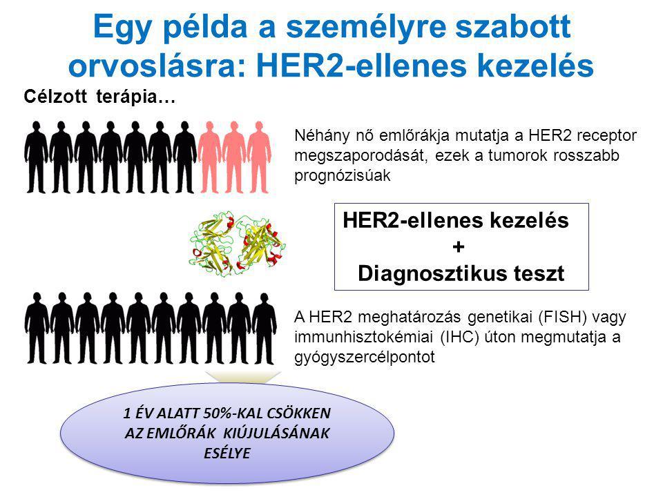 Egy példa a személyre szabott orvoslásra: HER2-ellenes kezelés