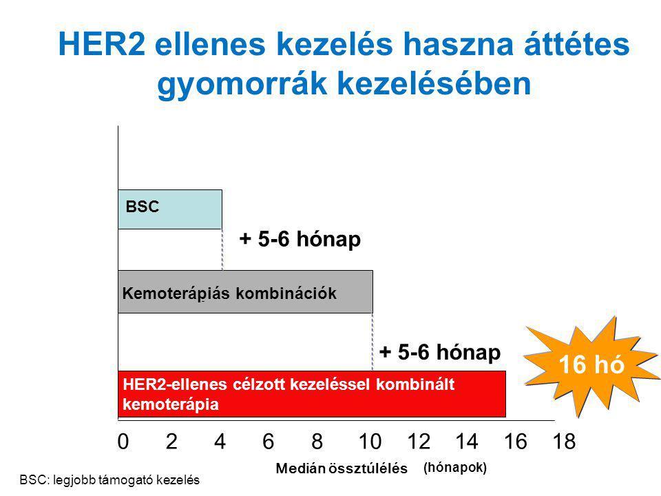HER2 ellenes kezelés haszna áttétes gyomorrák kezelésében