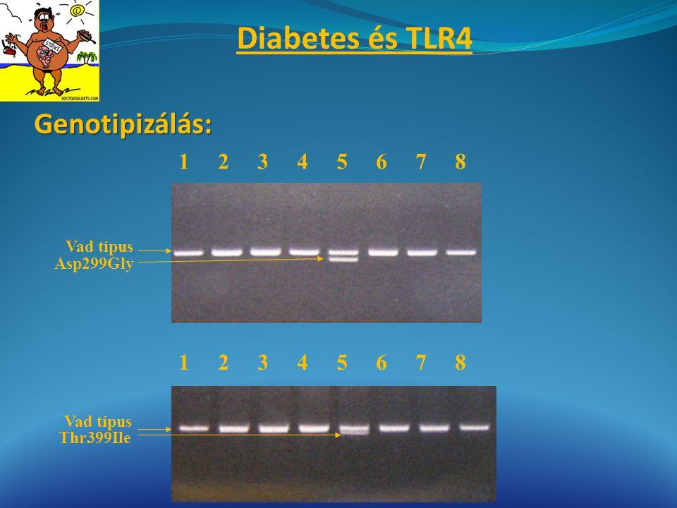 Diabetes és TLR4 Genotipizálás: 1 2 3 4 5 6 7 8 1 2 3 4 5 6 7 8