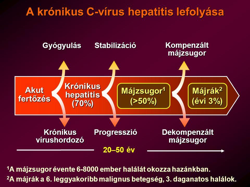 A krónikus C-vírus hepatitis lefolyása
