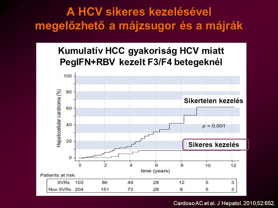 A HCV sikeres kezelésével megelőzhető a májzsugor és a májrák