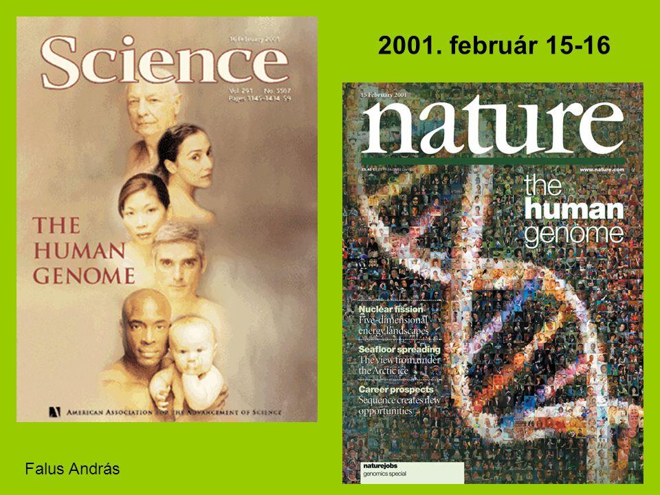 2001. február 15-16 Falus András 2