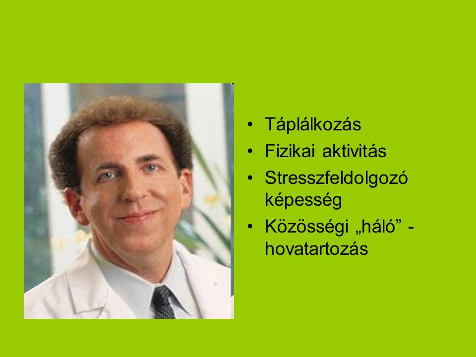 """Táplálkozás Fizikai aktivitás Stresszfeldolgozó képesség Közösségi """"háló - hovatartozás"""