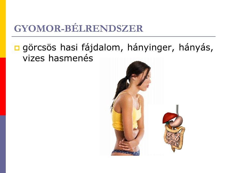 GYOMOR-BÉLRENDSZER görcsös hasi fájdalom, hányinger, hányás, vizes hasmenés