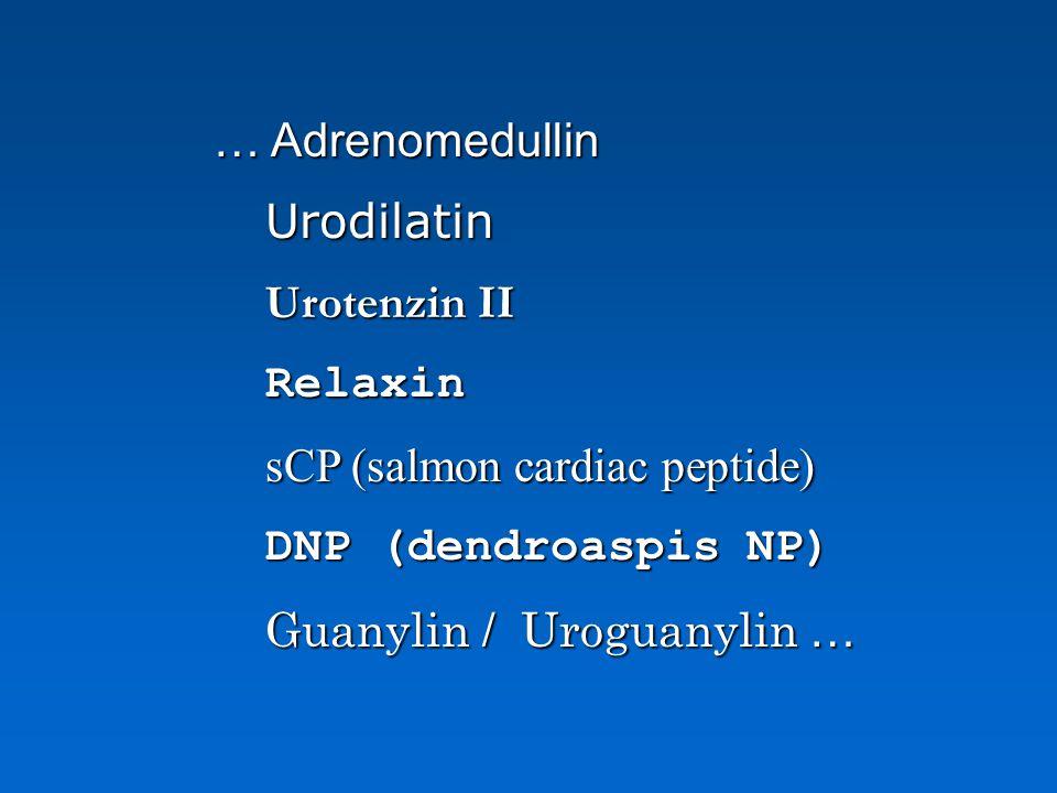 … Adrenomedullin Urodilatin. Urotenzin II. Relaxin. sCP (salmon cardiac peptide) DNP (dendroaspis NP)