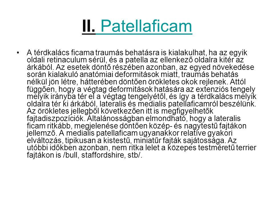 II. Patellaficam