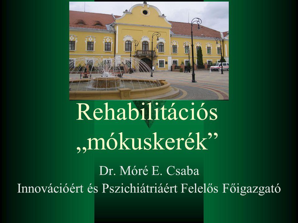"""Rehabilitációs """"mókuskerék"""