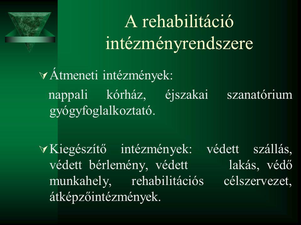 A rehabilitáció intézményrendszere