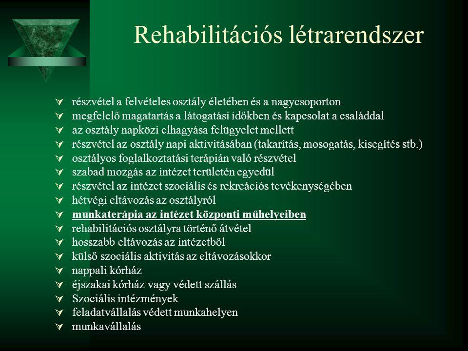Rehabilitációs létrarendszer