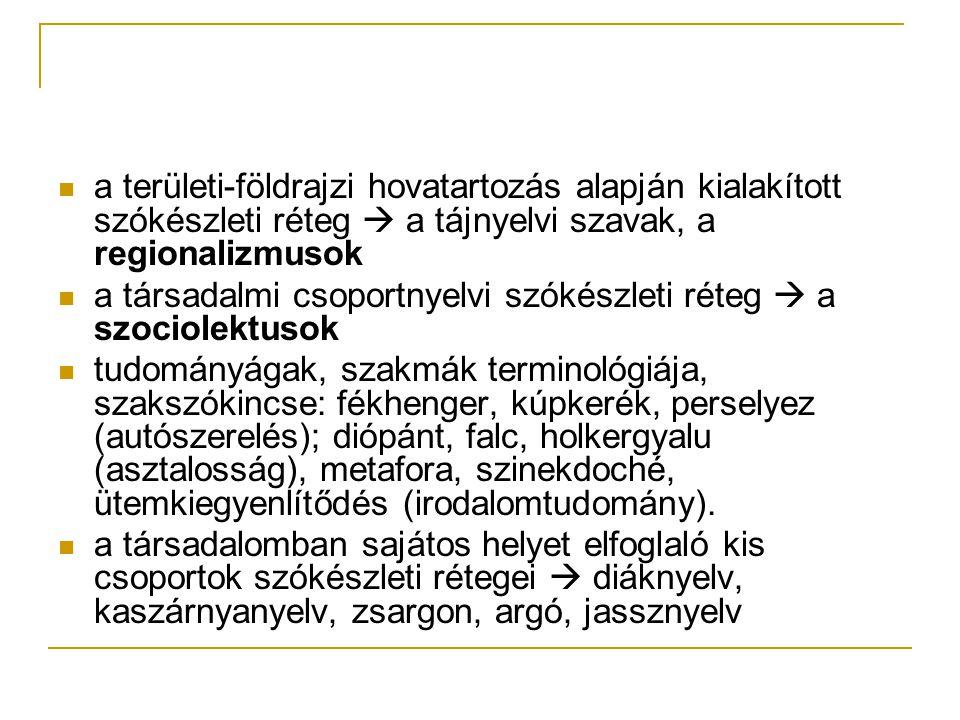 a területi-földrajzi hovatartozás alapján kialakított szókészleti réteg  a tájnyelvi szavak, a regionalizmusok