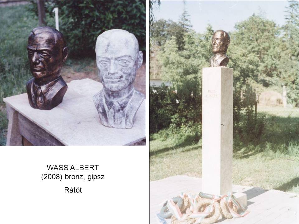 WASS ALBERT (2008) bronz, gipsz