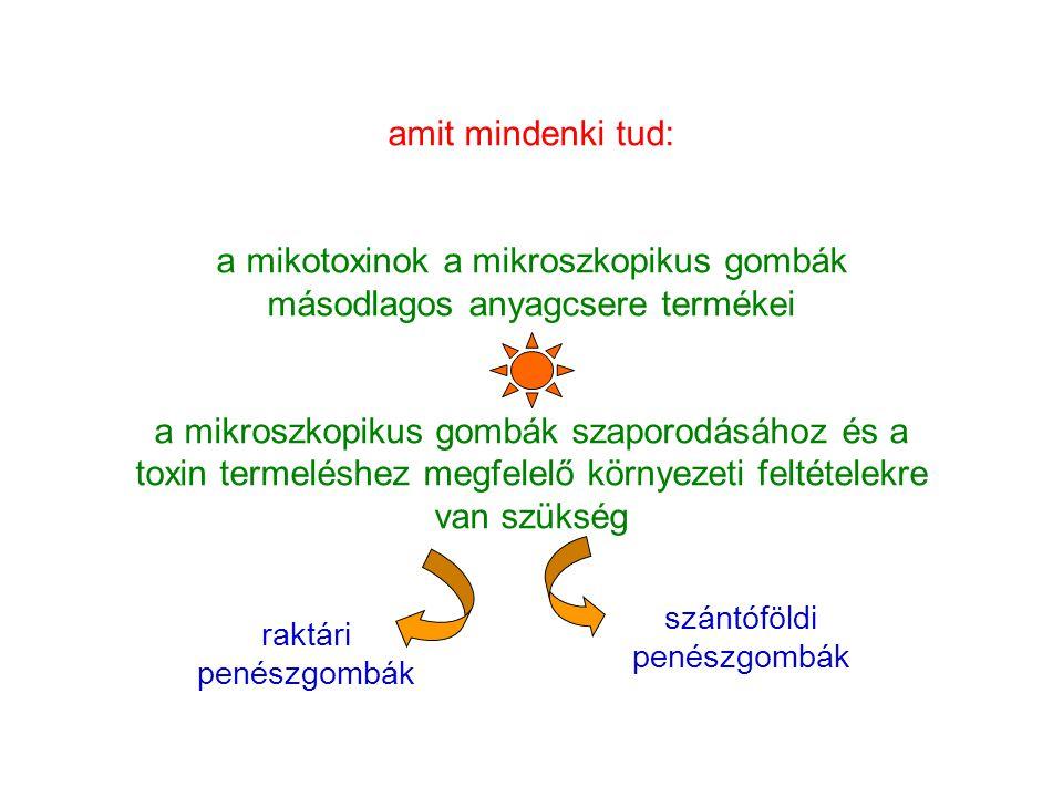 a mikotoxinok a mikroszkopikus gombák másodlagos anyagcsere termékei