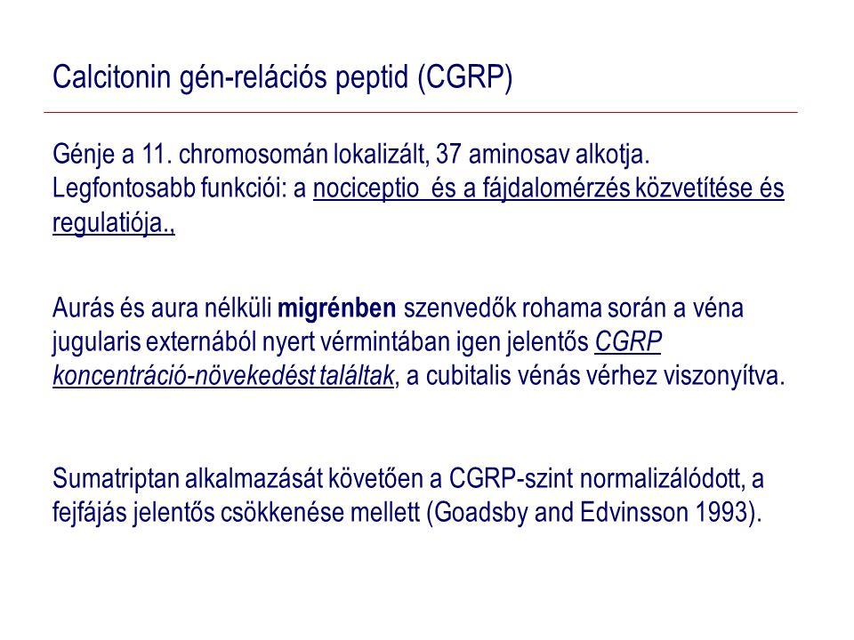 Calcitonin gén-relációs peptid (CGRP)