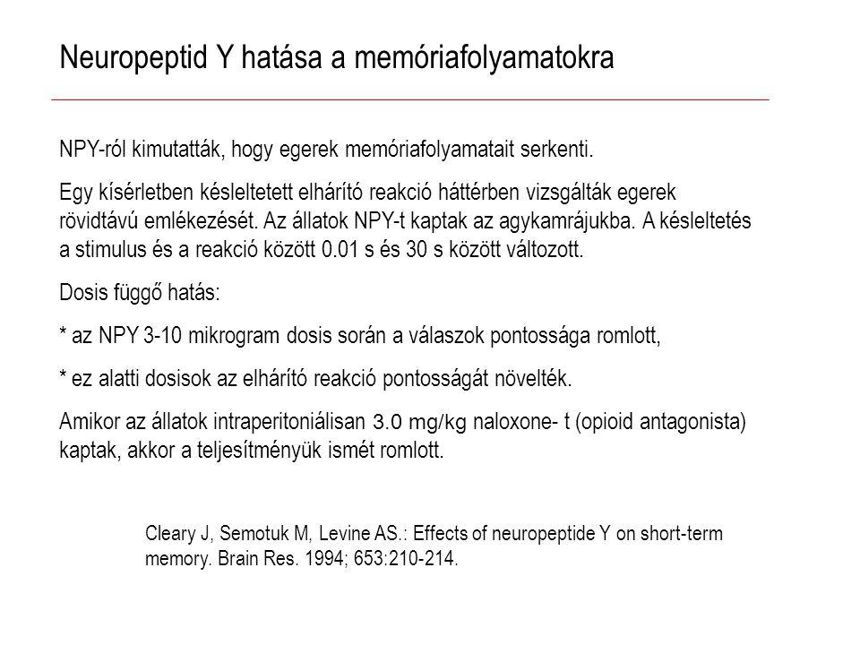 Neuropeptid Y hatása a memóriafolyamatokra