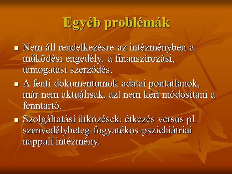 Egyéb problémák Nem áll rendelkezésre az intézményben a működési engedély, a finanszírozási, támogatási szerződés.