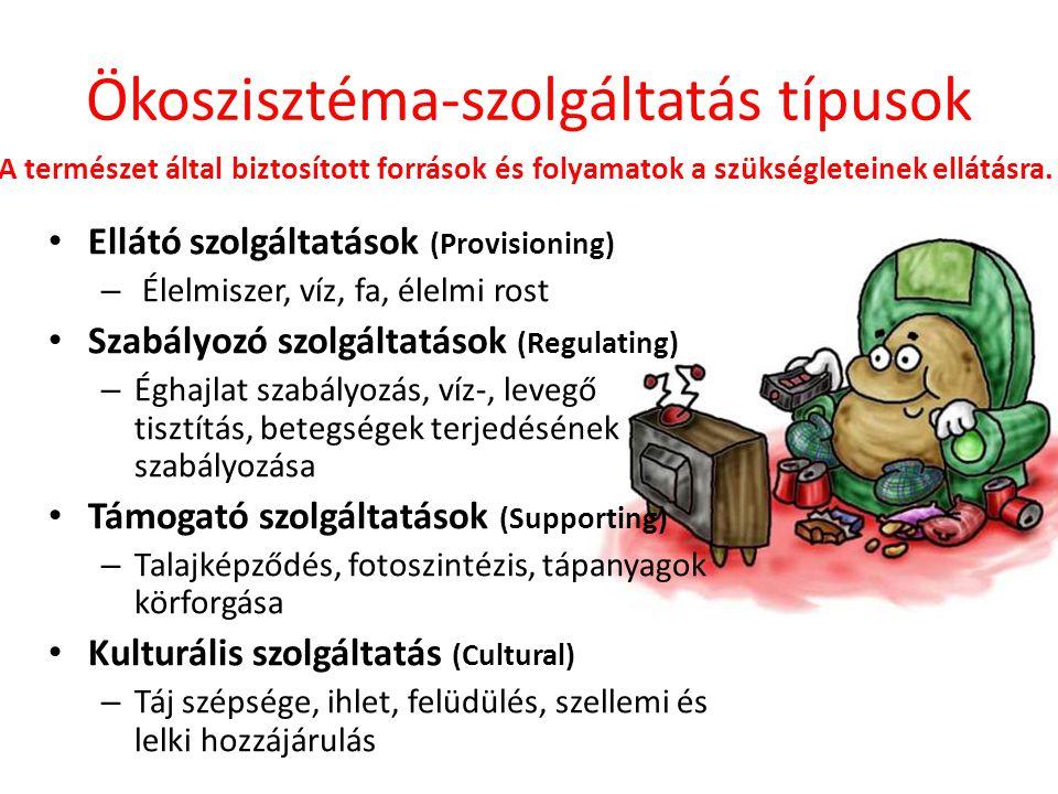 Ökoszisztéma-szolgáltatás típusok