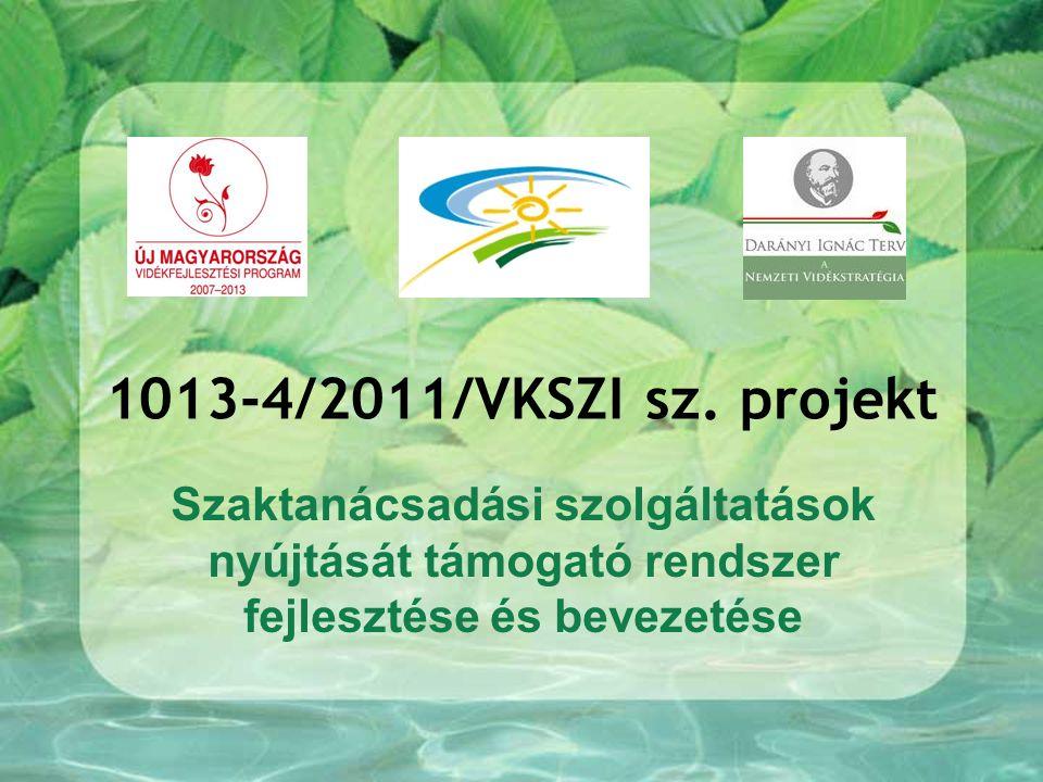 1013-4/2011/VKSZI sz.