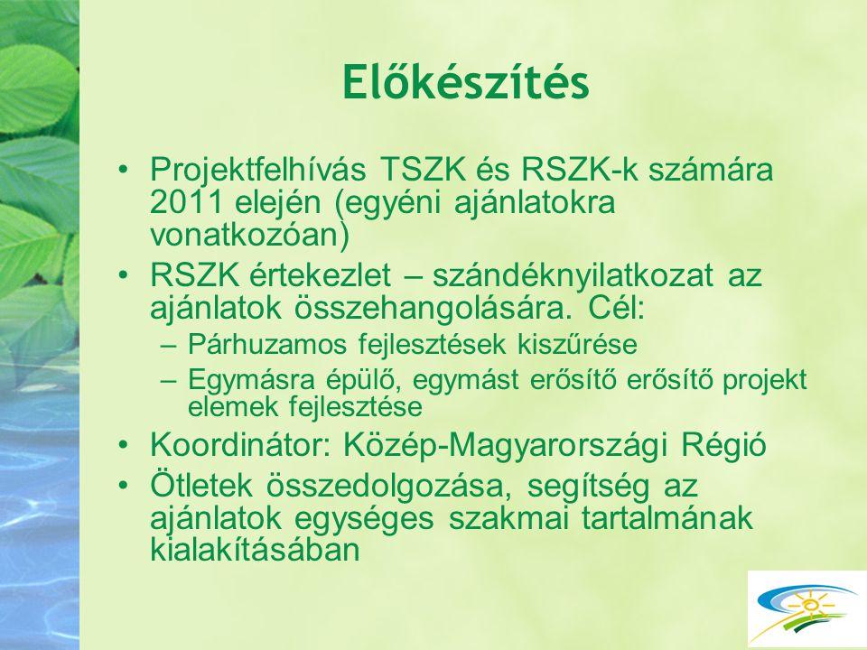 Előkészítés Projektfelhívás TSZK és RSZK-k számára 2011 elején (egyéni ajánlatokra vonatkozóan)
