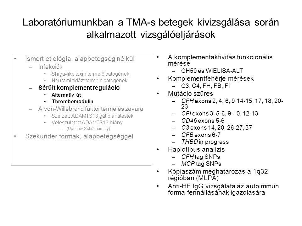 Laboratóriumunkban a TMA-s betegek kivizsgálása során alkalmazott vizsgálóeljárások