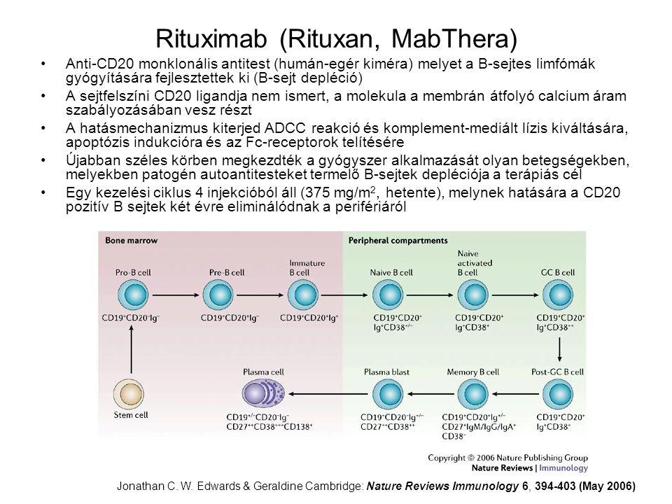 Rituximab (Rituxan, MabThera)