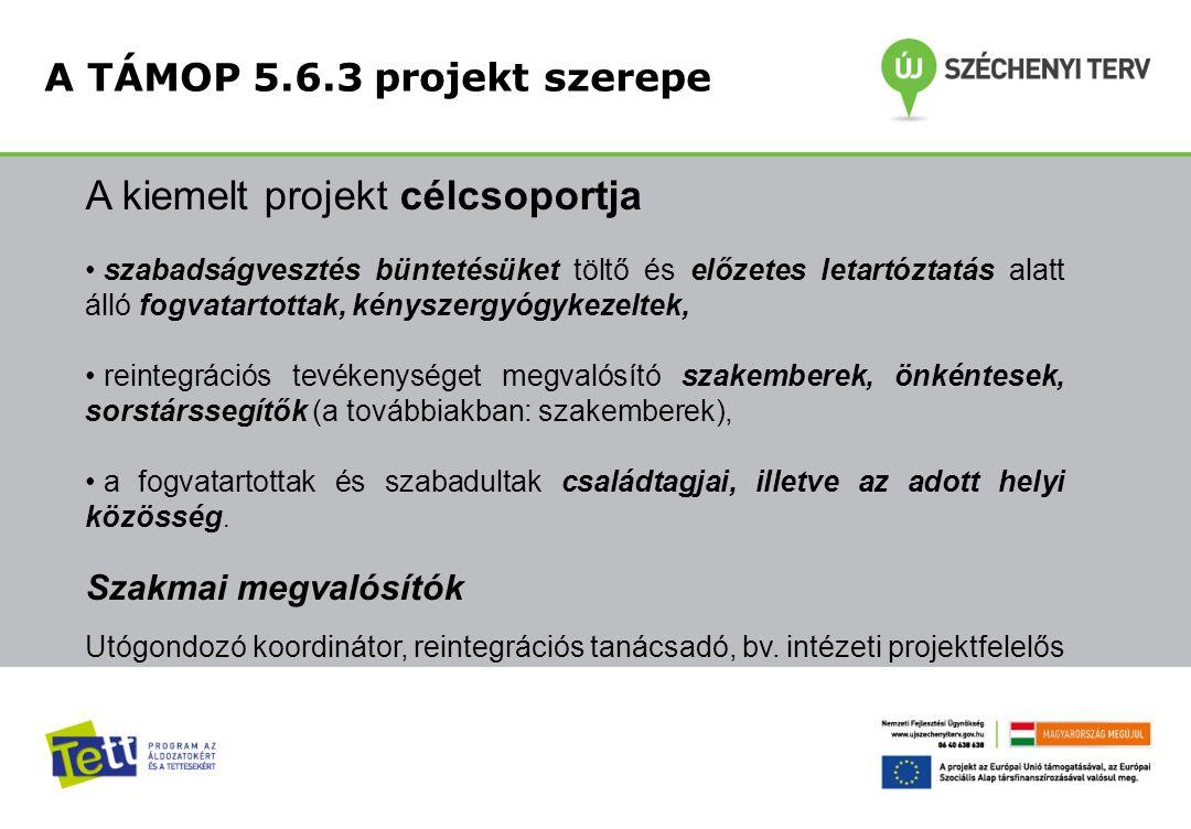 A kiemelt projekt célcsoportja