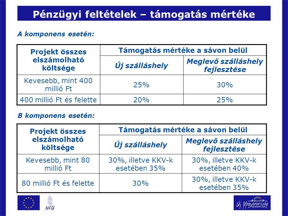 Pénzügyi feltételek – támogatás mértéke