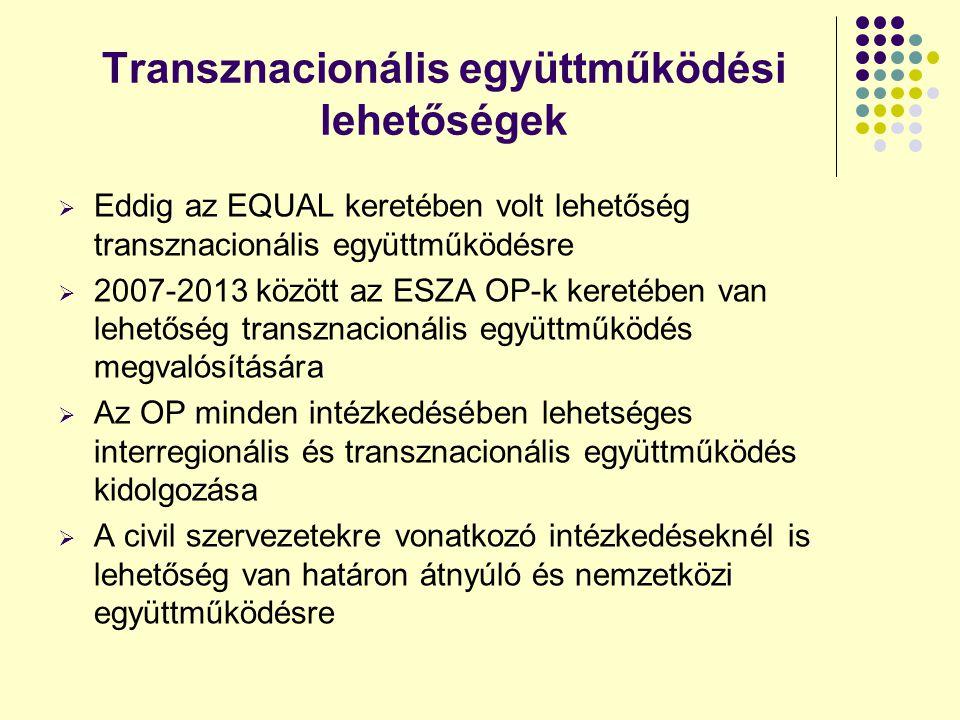 Transznacionális együttműködési lehetőségek